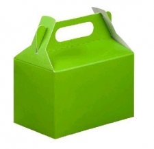 PARTY BOX LIME GREEN