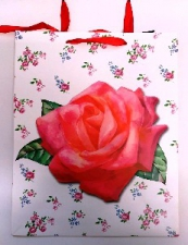 GIFT BAG FLOWERS LRG 40 X 30 CM