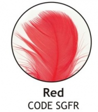 BALLOON FEATHERS RED