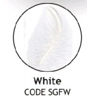 BALLOON FEATHERS WHITE